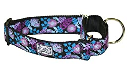 RC Pet Products 1-1/2-Inch All Webbing Martingale Dog Collar, Medium, Calypso