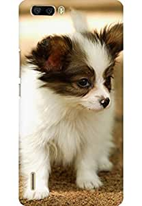 AMEZ designer printed 3d premium high quality back case cover for Huawei Honor 6 Plus (Cute Lovely Puppy Walking Dog Animal)