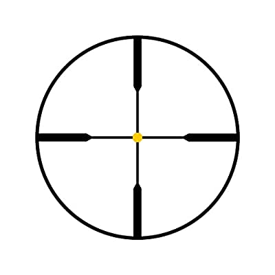 Trijicon TR22 AccuPoint 2.5-10x56 Riflescope Standard Duplex Crosshair with Amber Dot, 30mm Tube from Trijicon