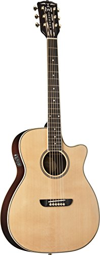 Washburn Wsd5240Scek Warren Haynes Signature Solo Deluxe Acoustic-Electric Guitar, Natural Gloss Finish