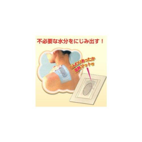東京企画 いきいき樹液シート温熱マット付 12枚