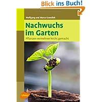 Nachwuchs im Garten: Pflanzen vermehren leicht gemacht