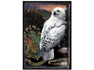 Harry Potter Hogwarts and Hedwig Half-Blood Prince Puzzle