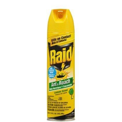 Raid Ant & Roach Killer 17.5 Oz front-1075218