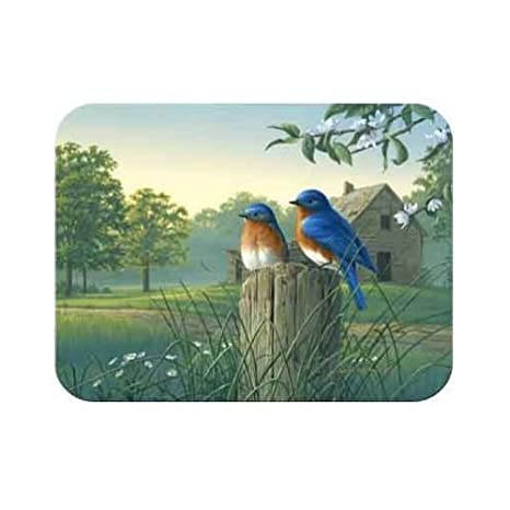 McGowan TT92381 Tuftop Pa-s ma-ana Bluebirds Cutting Board-Small