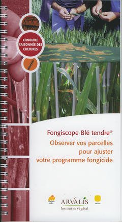 fongiscope-ble-tendre-observer-vos-parcelles-pour-ajuster-votre-programme-fongicide