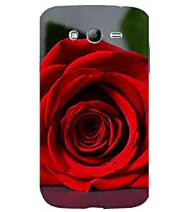printtech Red Flower Rose Back Case Cover for Samsung Galaxy Grand Neo Plus / Samsung Galaxy Grand Neo Plus i9060i