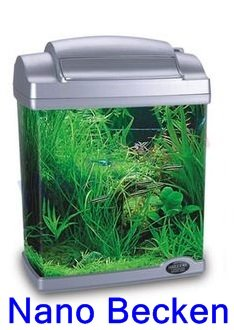 nano aquarium incl zubeh r aus acryl f r s und salzwasser. Black Bedroom Furniture Sets. Home Design Ideas