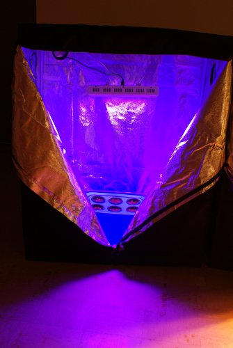Hydroponics Starter Kit Bud Buddy Complete Grow Tent
