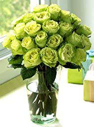 Two Dozen Chartreuse Roses