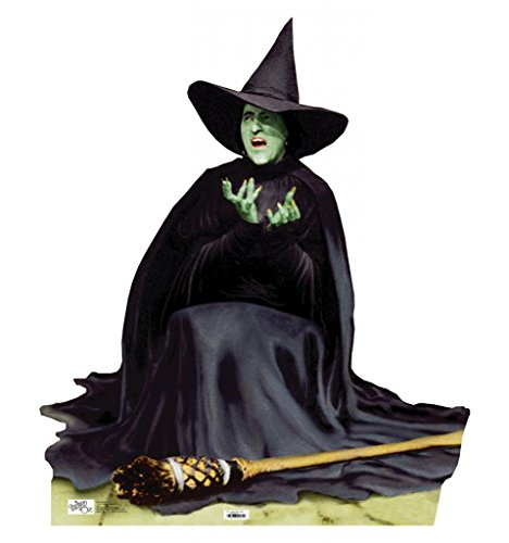 The Wicked Witch Photo Booth Prop