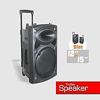 12 Inch Active Travel Speaker