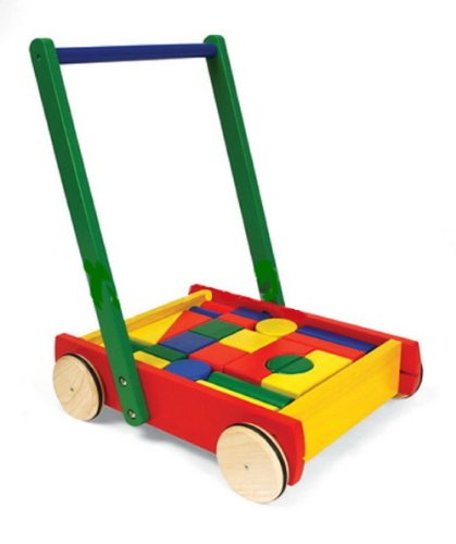 Baby Walker with Blocks by Pintoy