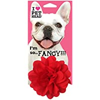 Pet Head Collar Accessory, One Size, Red Flower'