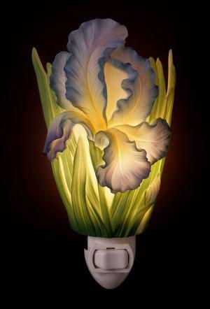 Bearded Iris Nightlight - Flowers of Light Ibis & Orchid Designs