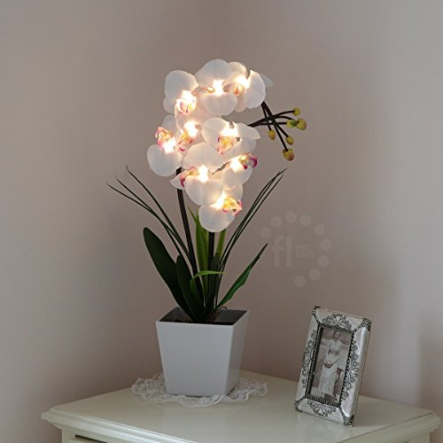 orchidee-blanche-phalaenopsis-9-led-avec-pot-56cm-par-blossom-collection