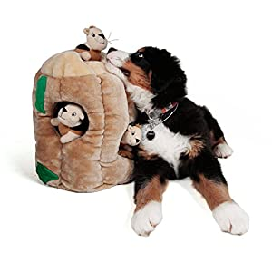 Kyjen Hide-A-Squirrel Puzzle Toy for Dogs from Kyjen
