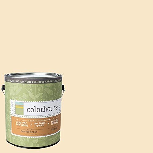 inspired-flat-interior-paint-create-01-gallon