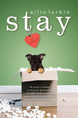 Stay-Paperback