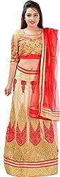 Panchi Women's Red and Beige Net Lehenga (P-Jashan-5092)