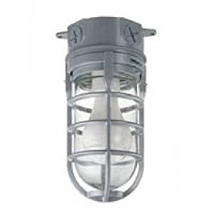 metal cage ceiling mount light flood lighting. Black Bedroom Furniture Sets. Home Design Ideas