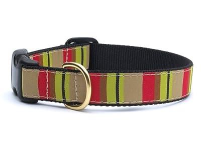 Adopted Dog Collar