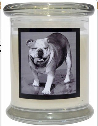 Aroma Paws 317 Breed Candle 12 Oz. Jar - Bulldog