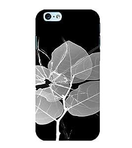 PrintVisa Broken Glass Leaf Design 3D Hard Polycarbonate Designer Back Case Cover for Apple iPhone 6