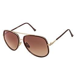 Chevera Emjay Brown Aviator Sunglasses