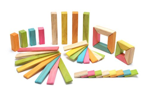 Tegu Tints Explorer 40 Piece Set