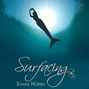 Surfacing Audiobook