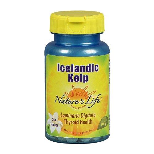 Nature's Life Kelp, Icelandic, 41 Mg, Laminaria Digitata, 250  Tablets,  (Pack of 2)