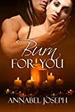 Burn For You (Mephisto series)