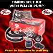 gates timing belts uk