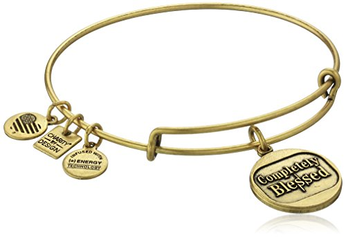 Alex and Ani Charity By Design Completely Blessed Bangle Bracelet