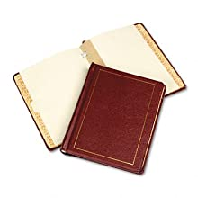 Wilson Jones Minute Book Corporate Record Book, Gold-tooled Imitation Leather Binder with Peerless Ledger Paper, 8.5 x 11 Inch Sheets, Red (W0396-11)