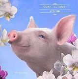 プリティ・イン・ピンク―女の子って素敵! / ボブ・エルスデール のシリーズ情報を見る