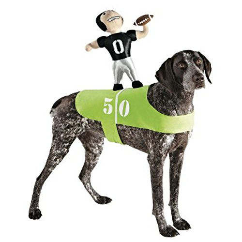 Pet Rider Superbowl Outfit
