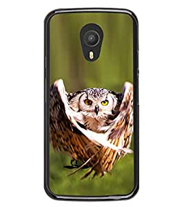 Prowling Owl 2D Hard Polycarbonate Designer Back Case Cover for Meizu M2 Note :: Meizu Blue Charm Note2