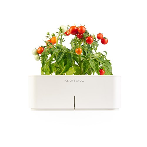 Click & Grow Smartpot Mini Tomato Indoor Grow Kit