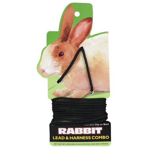 Rabbit Harness - Black