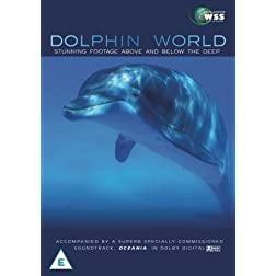 Dolphin World