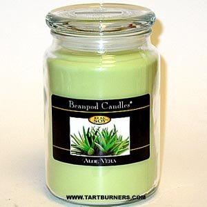 Beanpod Candles, Aloe Vera, 25-Ounce