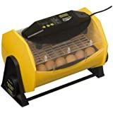 Brinsea Products Fully Automatic Egg Incubator for Hatching 24 Chicken Eggs or Equivalent