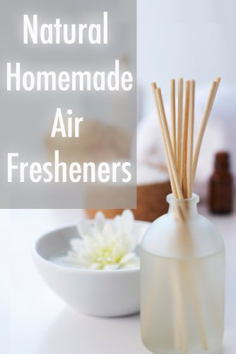 Ebook Natural Homemade Air Fresheners The Ultimate Guide English Edition Di Sarah Dempsen