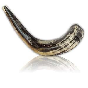 Schofar Jerusalem Shofar Kosher Spiral Rams Horn Polished