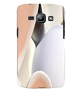 GADGET LOOKS PRINTED BACK COVER FOR Samsung Galaxy J1 MULTICOLOR