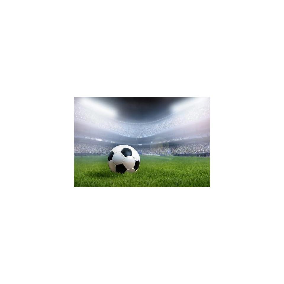 Digitaldruck Fototapete Fussball Stadion 200x133 Tapete