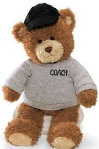 Gund Career and Lifestyle Bear - Coach