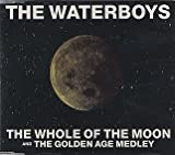 The Waterboys The Whole Of The Moon / The Golden Age Medley